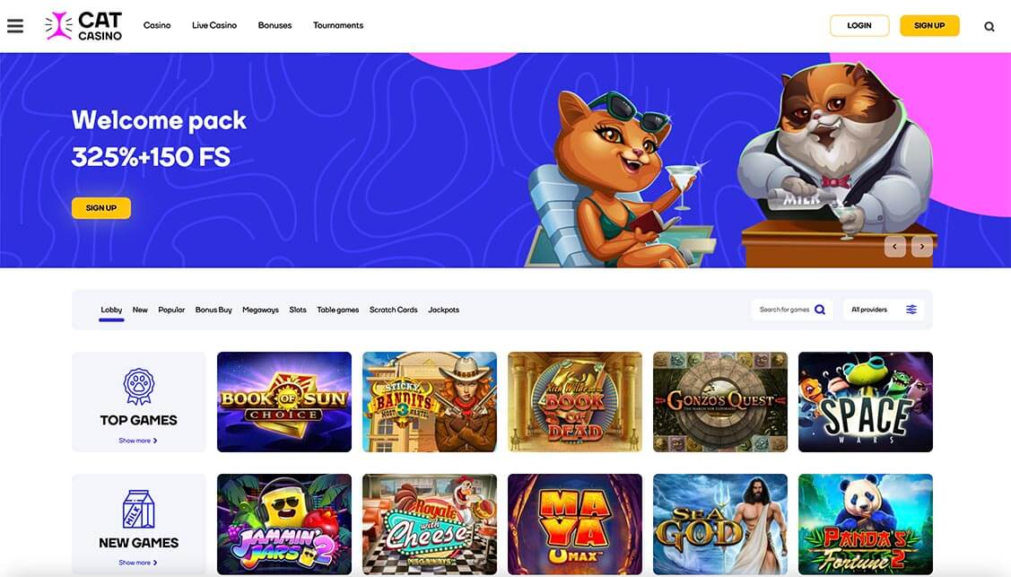 Cat Casino Review